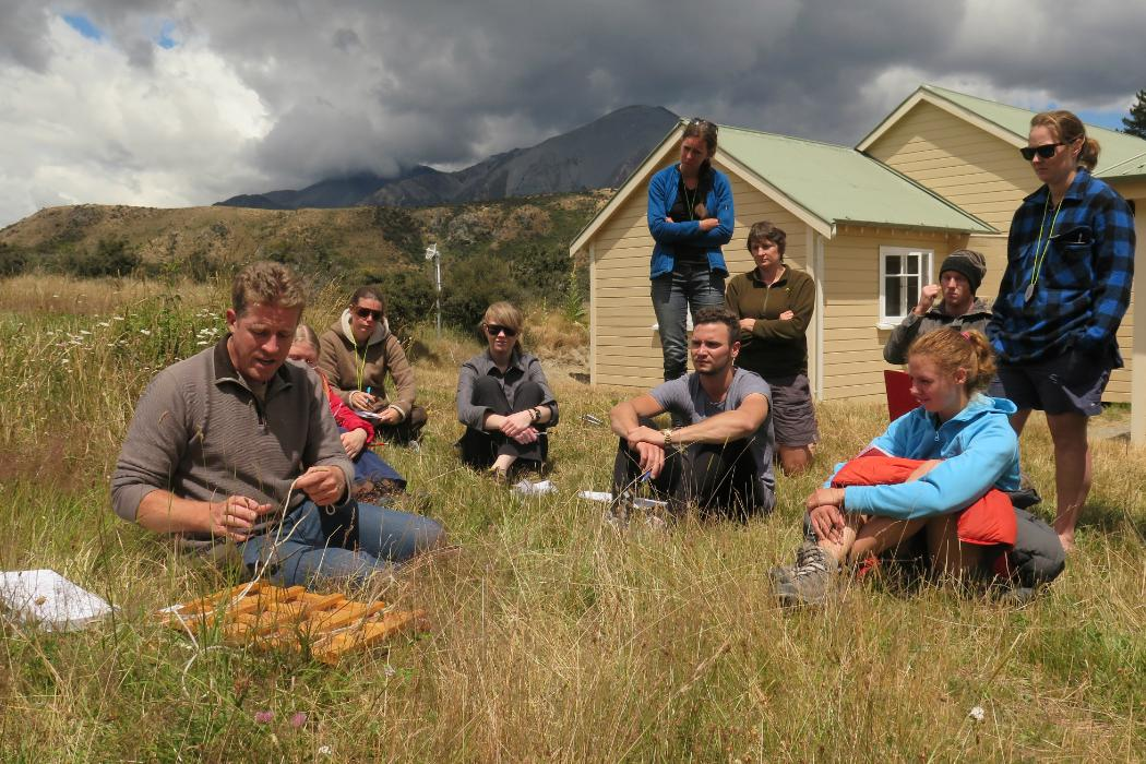 Group field work in mountains, Biology